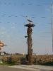 Крымские фотки